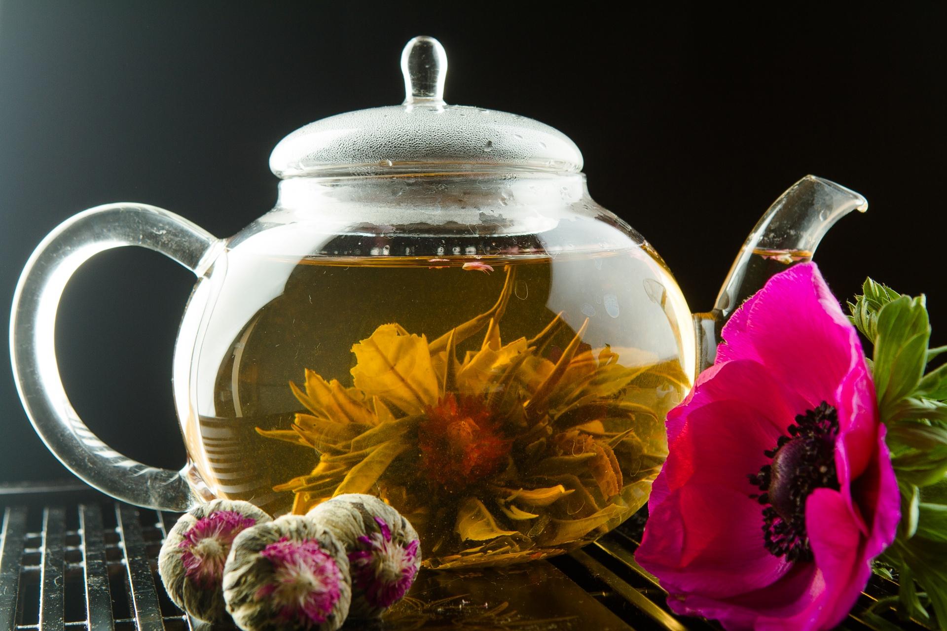 летне-осенние картинки зеленого чая в чайнике фотосалоны