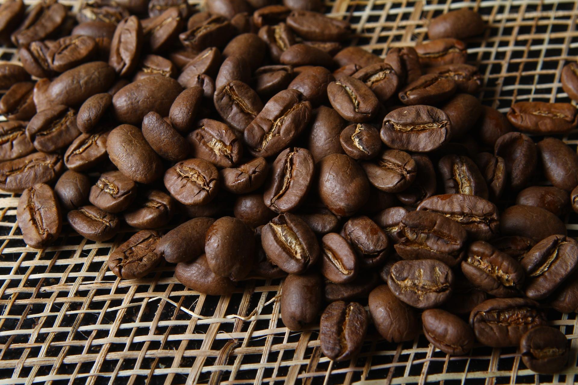 марагоджип кофе фото фотографии, расположение