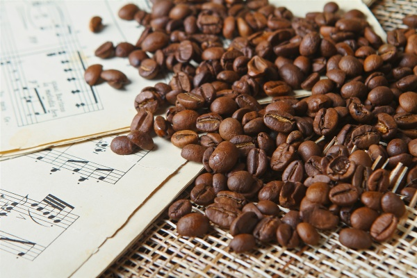 Фотография Black Professional Supremo